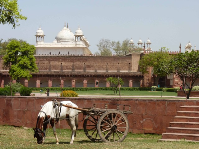 red fort - aggra