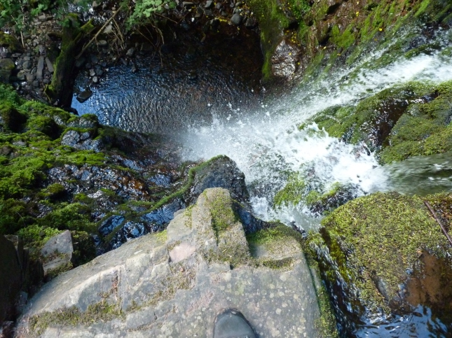 Looking down one of the many waterfalls on the wooded lower slopes.