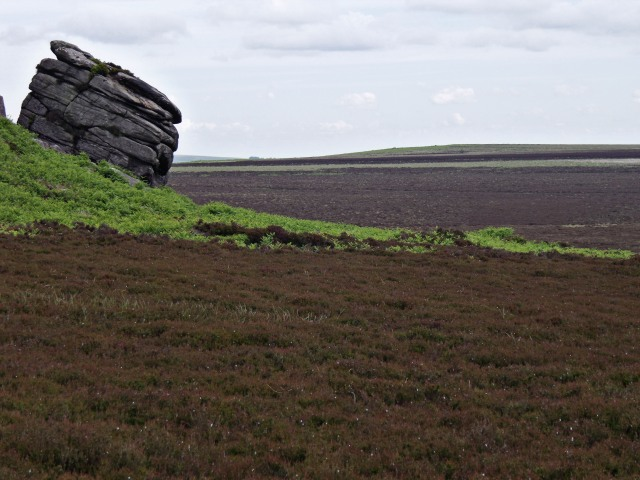 The distinctive Cowper Stone on the moors above Upper Burbage Bridge.