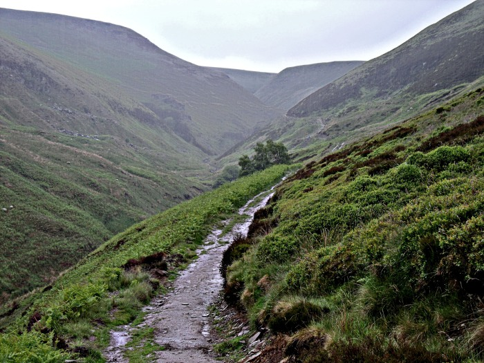 The trail along the edge of Little Howden Moor.