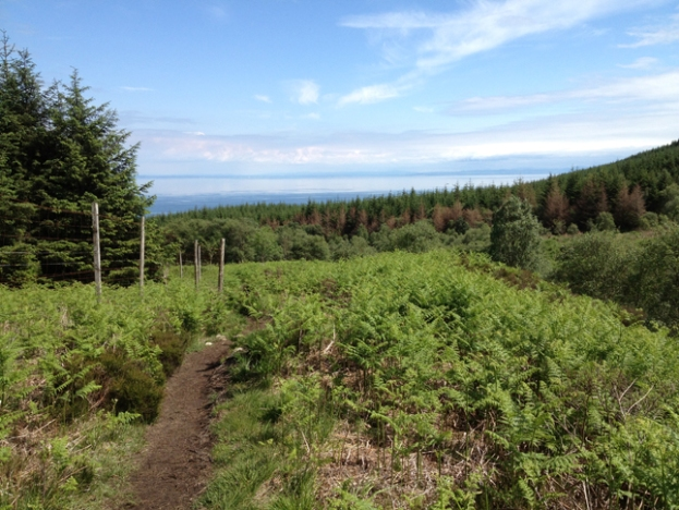 Hiking through the picturesque forests on the lower slopes of Goatfell towards Corrie and the sea