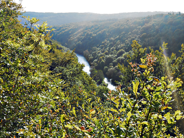 A first view of the river from up high on the rocks at Symonds Yat