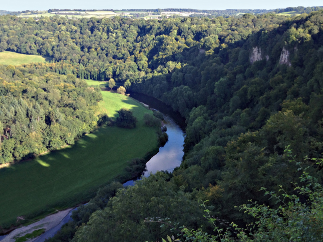 The Yat Gorge for above as seen from the Symonds Yat Viewpoint