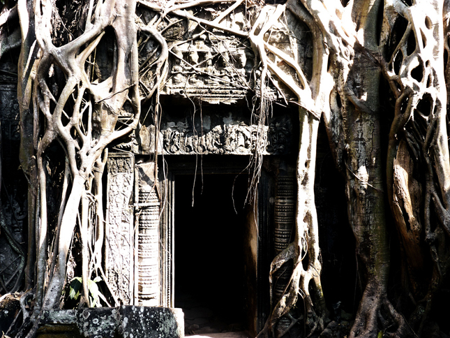 Overgrown Doorway - Ta Prohm Temple