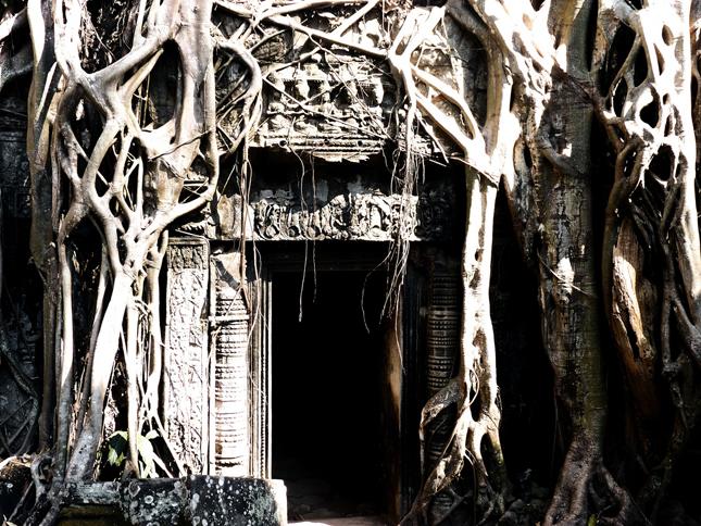 Overgrown Doorway - Ta Prohm Temple