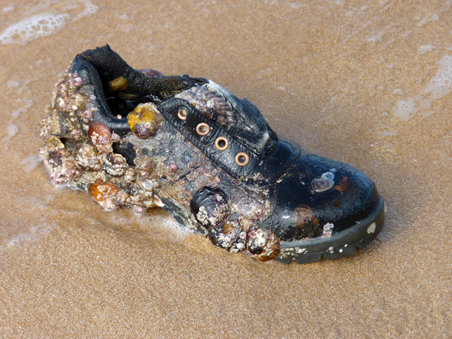 Old Shoe on Phu Quoc Beach