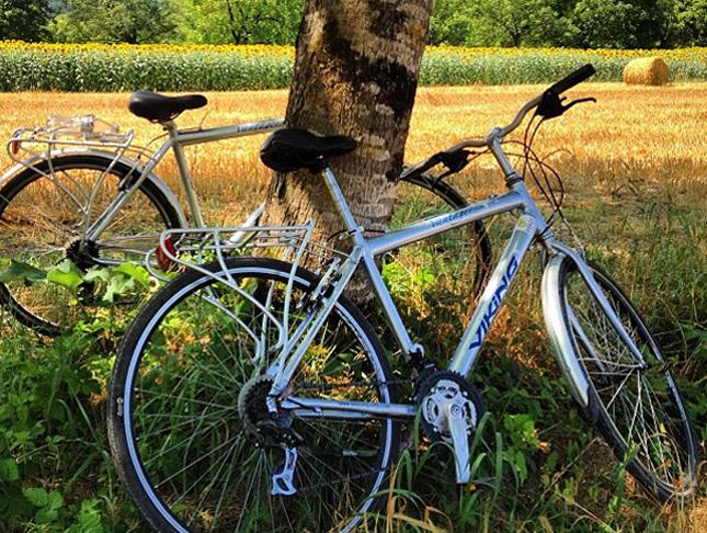 Bikes in France