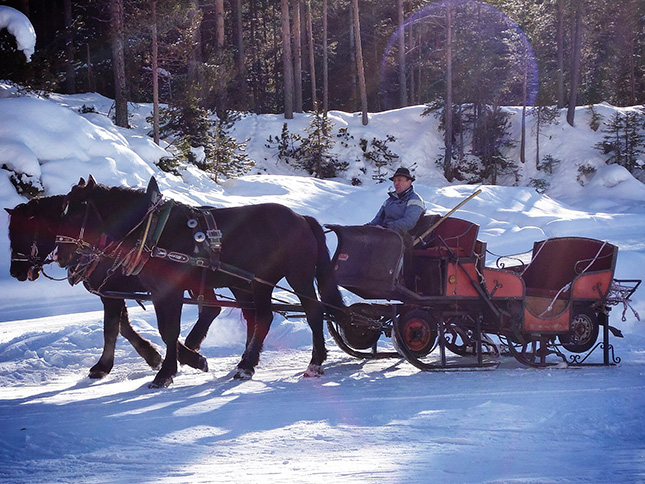 The horse tow out of the valley along a frozen river bed