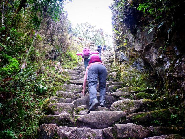 Steps to Inti Punku