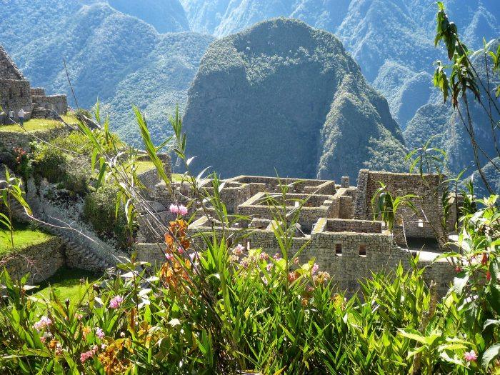 Gardens of Machu Picchu